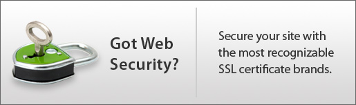 Got Web Security?